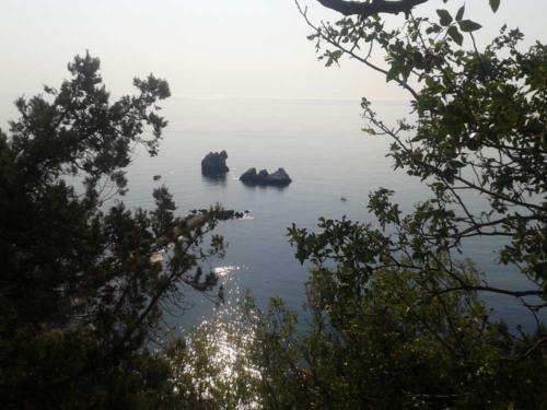 Crimea Avg 2014 03