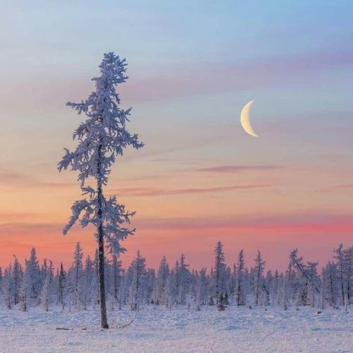 Прощай, зима!