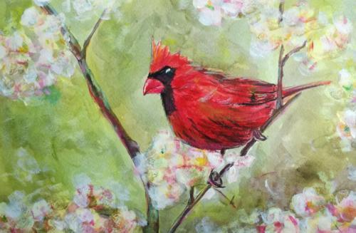 Красный кардинал