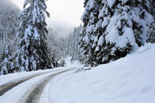 16 МАСЛО Зимний пейзаж pixabay com